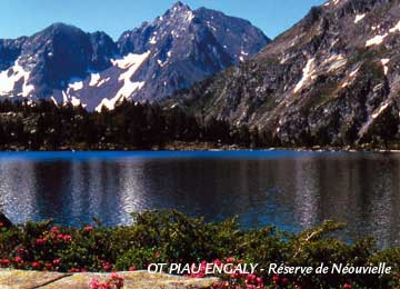 RESORT : Piau-Engaly